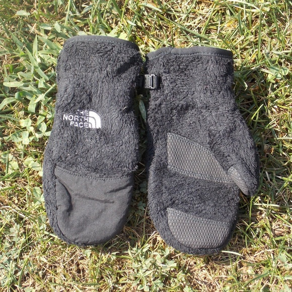 The North Face Other - The North Face Youth Kids Fleece Mittens Small